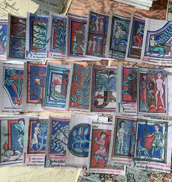 Medieval Medicinal Ephemera Set, Book of Shadows, Bullet Journaling, Vintage Ephemera, Stationery Set, Junk Journal, Dark Ephemera, Grimoire