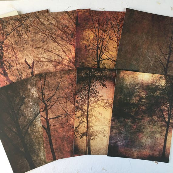 Dark Trees, Forest, Flat Notecard, Envelopes, Set of 8, 5 x 7 inches. Writing Set, Stationery Set, Blank Cards, Woodland Note Cards