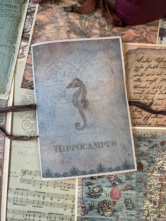 Seahorse Notebook, Paperback, Writing Journal, Travel Journal, Gifts for Writers, Thick Paper, A5 insert, Sketchbook, Ocean