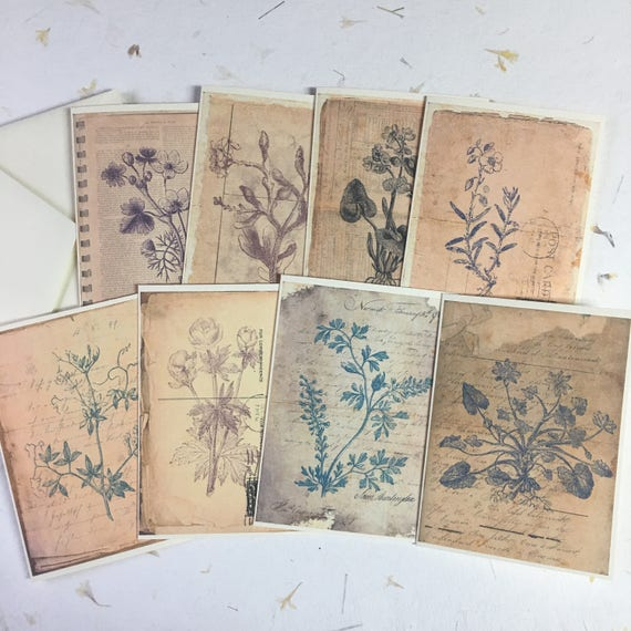Antique Botanical, Blank Flat Notecards and Envelopes, Set of 8, 5 x 7 inches, Vintage Botanical Prints, Stationery Set, Writing Set