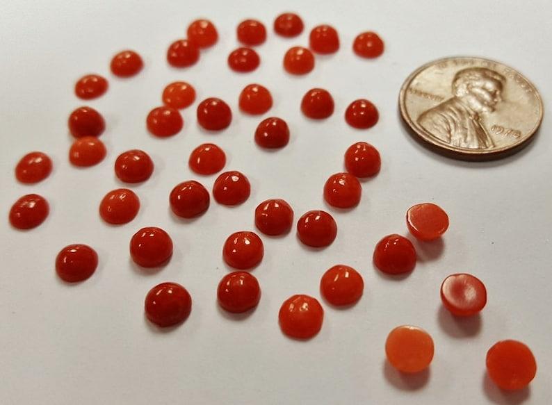 Round Semi-Precious Cabochons E473 6 Vintage Genuine Red Shell 5mm