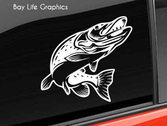 musky muskie vinyl decal window or bumper sticker fish