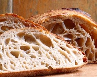 Extreme Fermentation - Bake Modified Gluten Sourdough Bread