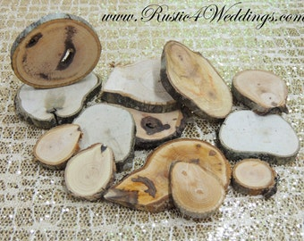 Wood Slices 1 to 5 inch