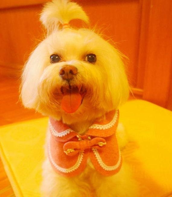 Petit chien printemps été vêtements chien cape avec broche chatte chat style noeud et rose coton doublure réversible Peter Pan col animal capelet (SL)