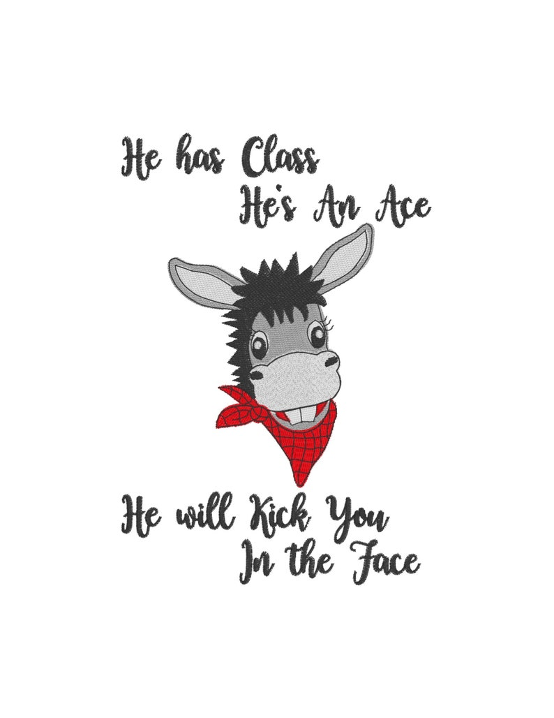 Donkey Girl andor  Boy 2 Files  l kick you in the face Filled Embroidery Digital Design 4x4 5x7 Floral Roses Headband