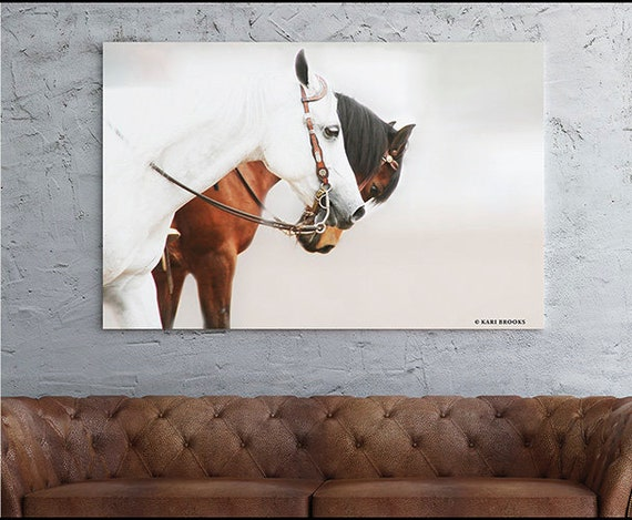Horse Print - White and Brown Horses -  Horse Photography -  Horse Portrait - Teen Print - Horse Art Prints - Bridled Horses