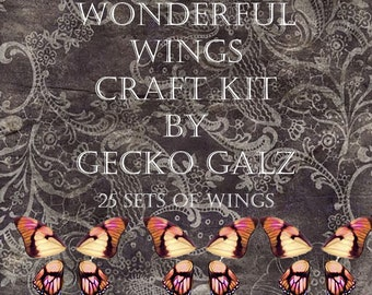 Wonderful Wings Craft Kit