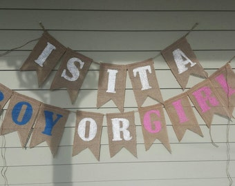 Boy or girl gender reveal party banner. Made by a stay at home veteran.
