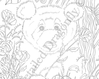 Panda Coloring Page Bear Adult Pages For Kids Animal Cute