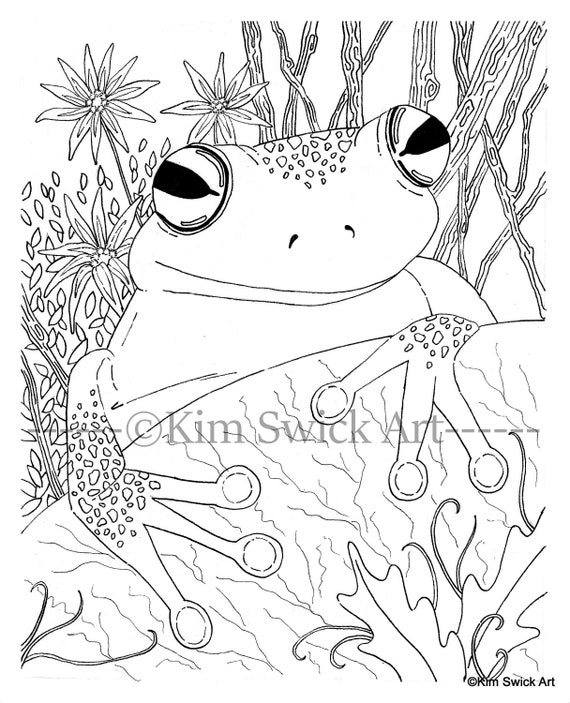 Coloring book - Clip Art Library | 703x570