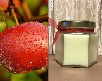 Apple Cinnamon Soy Candle, 4oz - Handcrafted