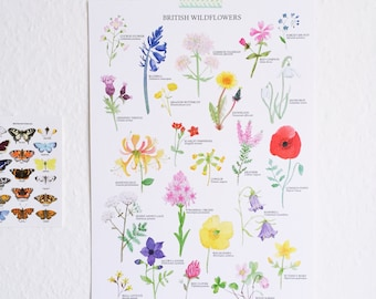 British Wildflowers Print - A3 - Watercolour Art Print - Wildflower Illustration - Botanical Print - British Nature Print - Floral Print