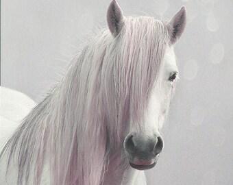 Fantasy pony wall art, fantasy art, fairytale horse photo, magical, nursery art, girls wall decor, pink, grey, white pony