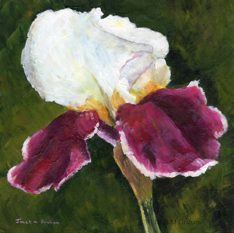 Iris Flower Floral Painting Sfa Original Hand Painted Acrylic Etsy