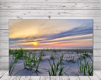 The Dunes on White by Dawn Marie