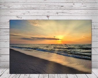 Lonely Seagull's Sunray Sunrise by Richard Pasquarella