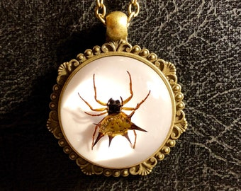 Steampunk Spider Key Pendant Real Spiny Orb Weaver Spider in Resin Clockwork Spider Gears Brass Key Chain Necklace Real Bug Insect Taxidermy