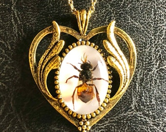 Gold Heart Honey Bee Specimen Bezel in Resin Insect Cameo Entomology Bug Necklace