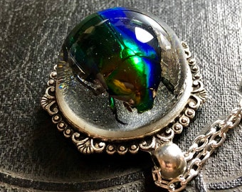 Real Scarab Beetle Rutelinae Green and Blue Metallic Insect Preserved Specimen in Glass Resin Bubble Dome Necklace Vulture Culture Entomolog