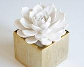 White Rosette Succulent Sculpture Gold Succulent Gift Faux Plant Indoor Planter Modern Home Office Decor Gold
