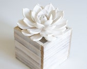 White Rosette Succulent Sculpture White Washed Wood Planter Faux Plant Indoor Plant Minimalist Modern Home Decor Rustic Art Object