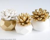 Gift Set of 3 Succulent Sculptures in Round and Gold Geometric Planters, Tabletop, Desktop, Modern, Home and Office Decor