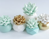 Set of 5 Succulent Sculptures in Round and Geometric, Gold and Teal Aqua Green Planters, Tabletop, Desktop, Modern, Home and Office Decor