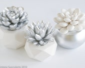 Gift Set of 3 Succulent Sculptures in Geometric Planters, Silver and White Home Holiday Decor, Tabletop, Desktop, Modern, Office Decor