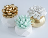 Set of 3 Succulent Sculptures in Gold Round and White or Aqua Green Geometric Planters, Tabletop, Desktop, Modern, Home and Office Decor