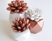 Copper Succulent Indoor Copper Planter Geometric Set Succulent Gift Modern Home or Office Decor
