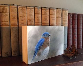 Bluebird on cradled panel