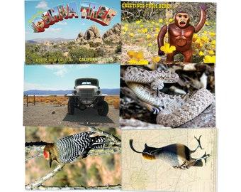 Little Desert Postcard Pack #1 - Six US Postal Compliant Cards
