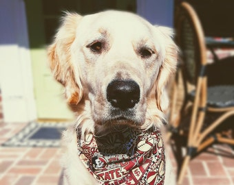 FSU Game Day Dog Bandana - Florida State University Dog Dad Gift - 3 Sizes - Reversible