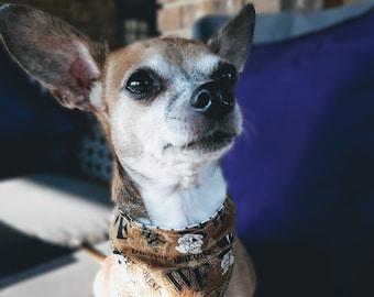 Wake Forest University Dog Bandana - 3 Sizes - WFU Gift