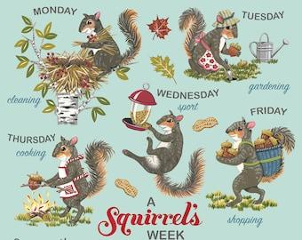 Squirrel Print, Squirrel Art, Retro Days of the Week Print, Squirrel Rescue, Squirrel Rehab, Squirrel Lover's Gift, Housewarming