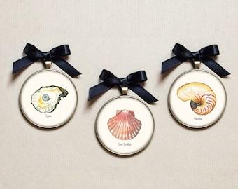 Seashell Ornament - Beach Ornaments - Shell Ornament - Beach House Decor -