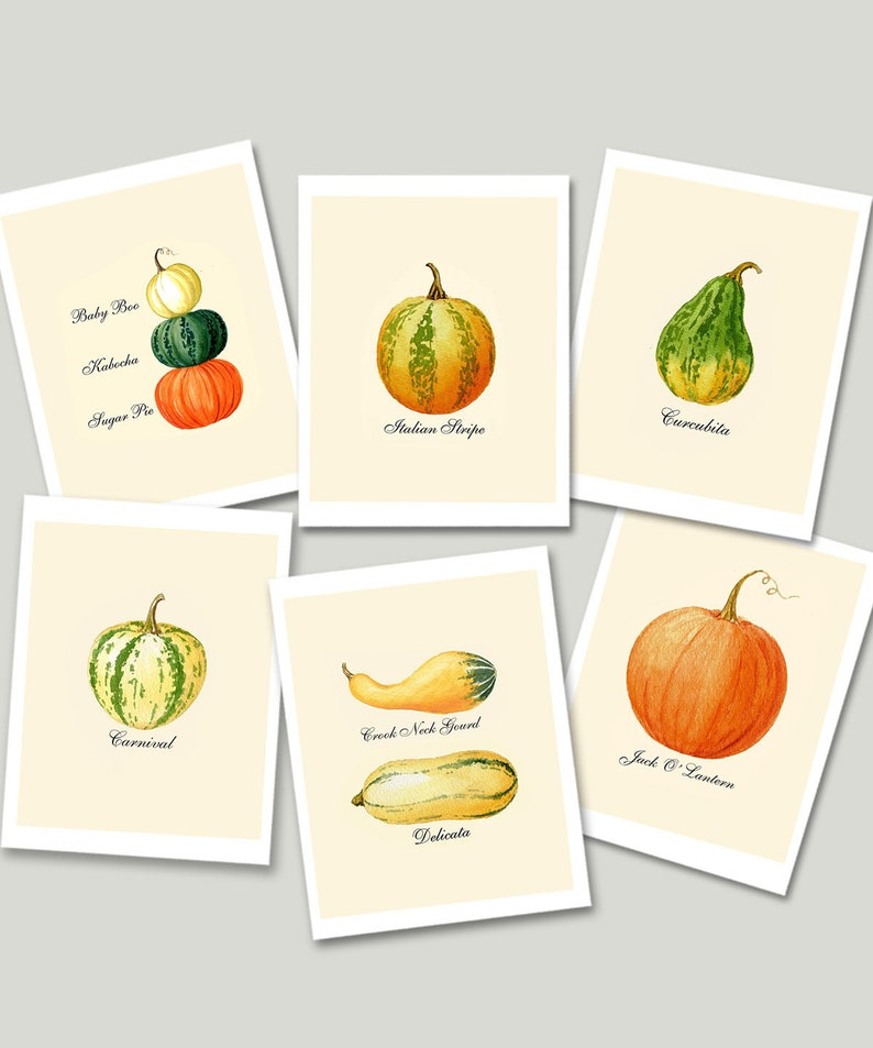 Pumpkin Cards Pumpkin Notecards Autumn Cards Thanksgiving image 0