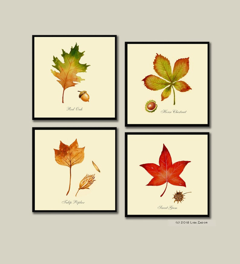 Autumn Leaves Coasters Coaster Set Halloween Thanksgiving image 0