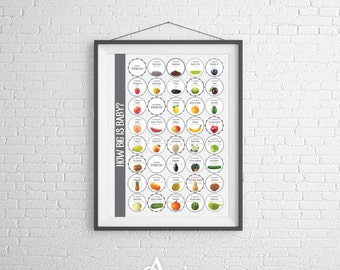 Pregnancy Announcement Countdown 11x14 Poster | Expecting Parent Grandparent Gift | Food Size Comparison | Printed Poster Digital Download