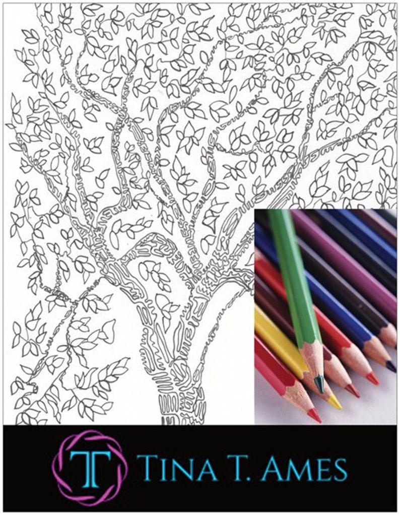 Coloriage Arbre Du Ciel.Coloriage Arbre Adulte Coloring Book Zentangle Sous 1 Tina Ames Grand Cadeau Meditation Griffonnages Cadeau Principal Arbre Art Zen
