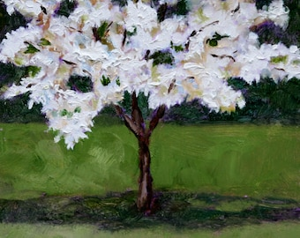 White Dogwood - Fine Art Print