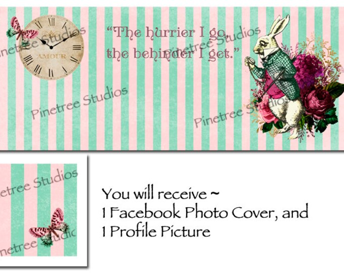 """White Rabbit ~ Facebook Blank Cover Photo and Profile Picture ~ Alice in Wonderland ~ """"The Hurrier I Go, The Behinder I Get"""""""