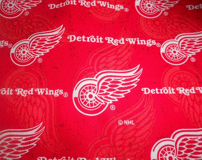 Red Wings Corn Hole Bags