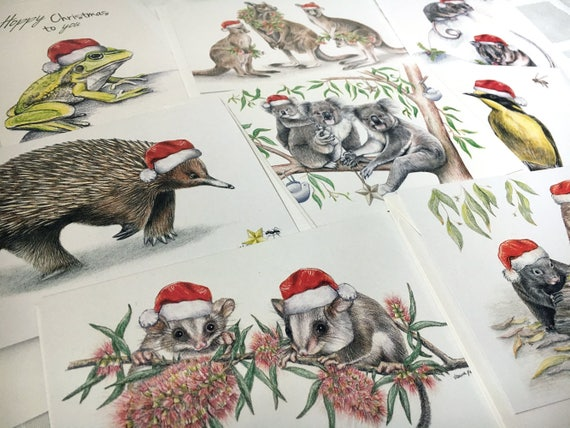 Wildlife Christmas Cards.Australian Christmas Card Pack Of 8 Mix Of Wildlife Animals Birds Merry Christmas Seasons Greetings Santa Hats Aussie Xmas Theme