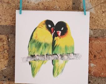 Illustrated Love Birds Card