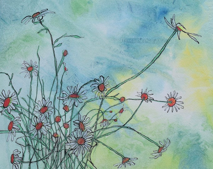 Watercolor painting of Wild Daisies