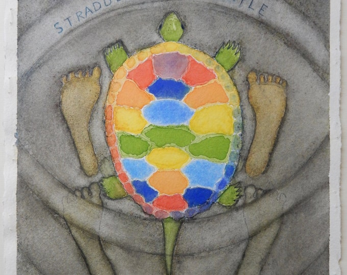 Straddle the Turtle #6