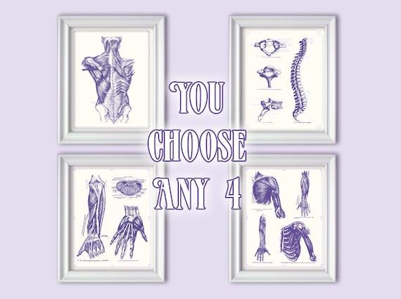 sale set choose any 4 posters gray s anatomy kitchen etsy