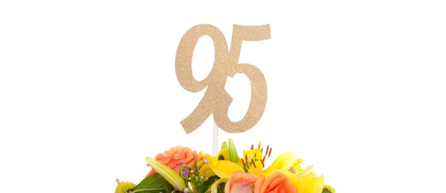 95th Birthday Decorations Party Decor Anniversary Decoration Milestone Ninety Fifth